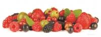 Кухонный фартук Лесные ягоды